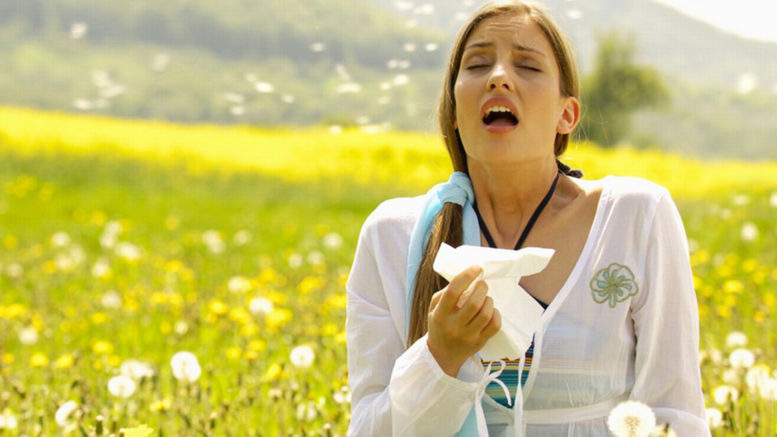 нужно знать об аллергии