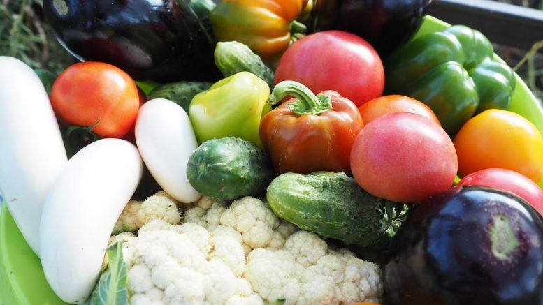 Вегетарианство не способ для похудения