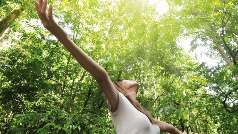 Как обрести гармонию и счастье